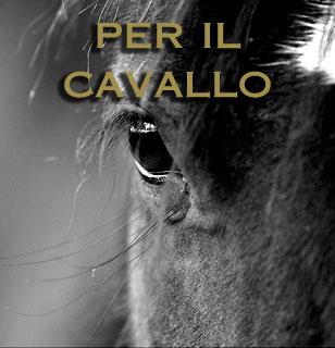 PER IL CAVALLO