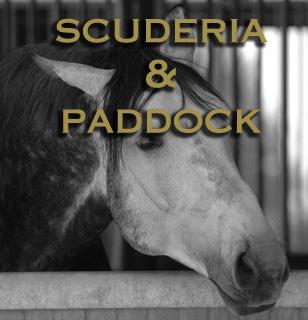 SCUDERIA E PADDOCK