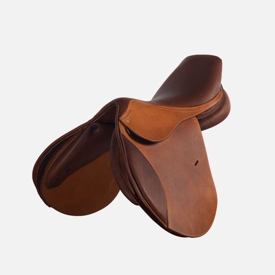 gianetti's saddle saron
