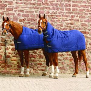 SOTTOPIUMINO HORSEWAR
