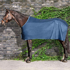 fly rug equiline venice