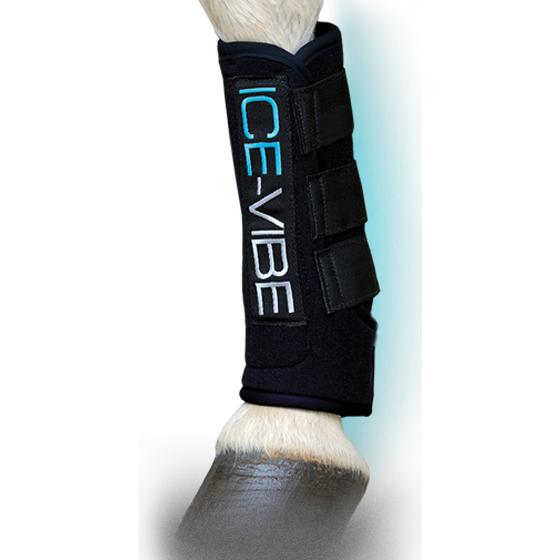 ice vibe leg horseware