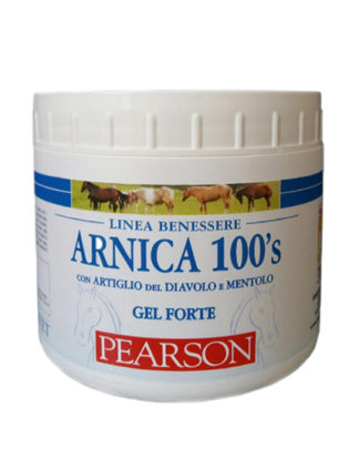 TENDON GEL ARNICA 100 S PEARSON