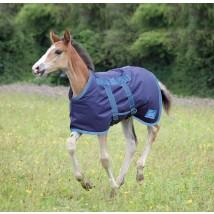 highlander foal rug