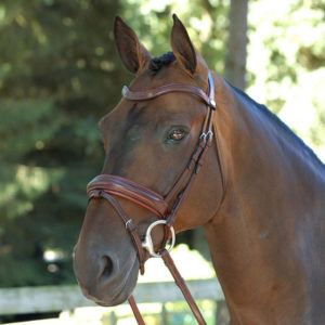 bridle dressage snaffle flash