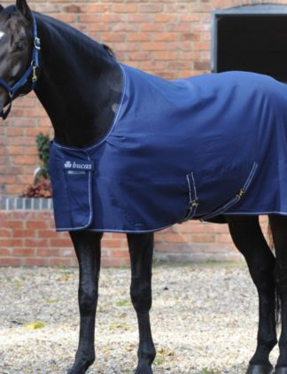 coperta cotone cavallo da box