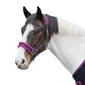 LOVESON BY HORSEWARE CAVEZZA