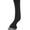 silver sox tendon horse