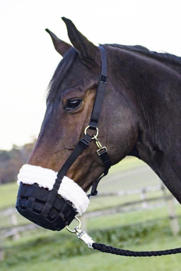 museruola per cavallo